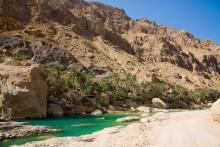 Wadi_Tiwi_(4)